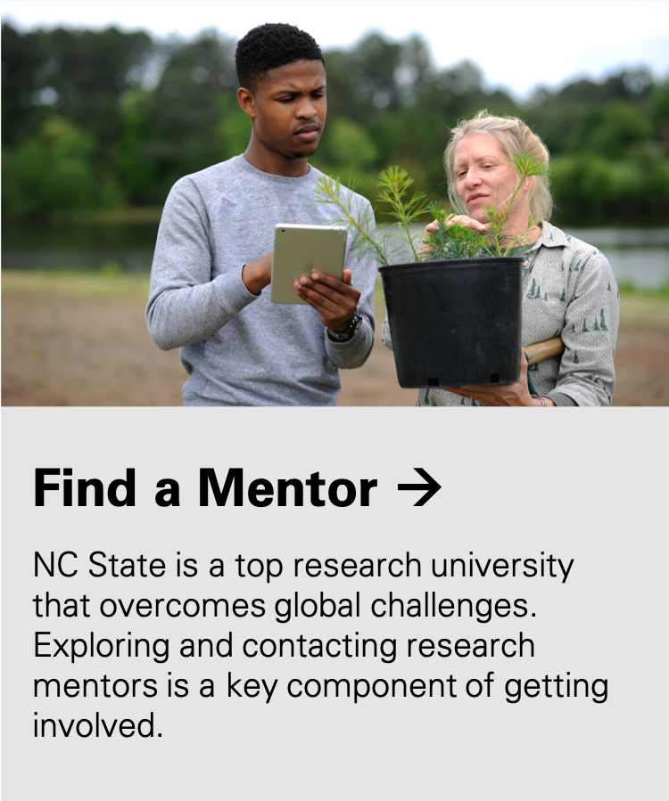 Find a Mentor: NC State is a top research university that overcomes global challenges. Exploring and contacting research mentors is a key component of getting involved.